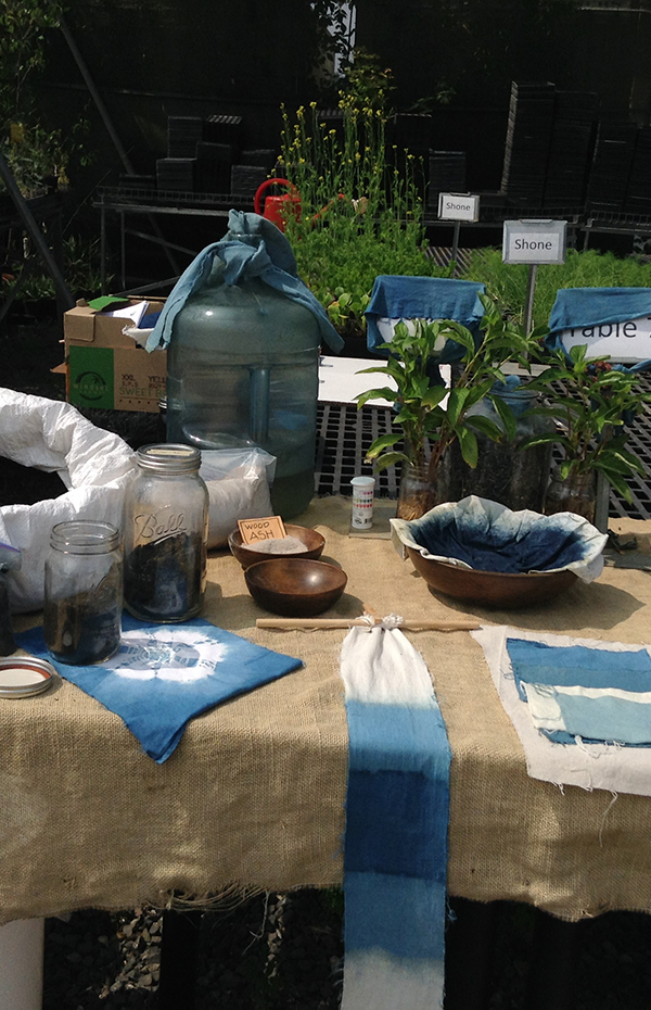 natural dyes on a table at Shone Farm